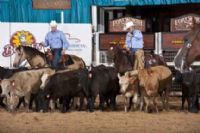 2011 NCHA Summer Spectacular<br> Sponsor Cutting Featuring Tom Holt!